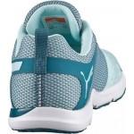 Γυναικείο Αθλητικό Παπούτσι PUMA PULSE FLEX XT 188094-01